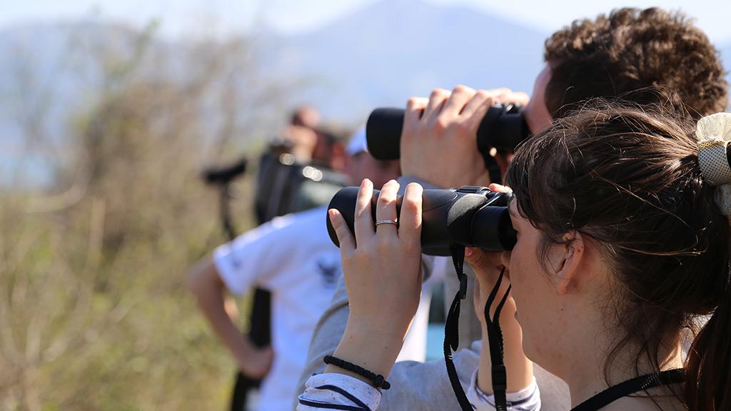 Promatranje Prica U Parku Prirode Hutovo Blato