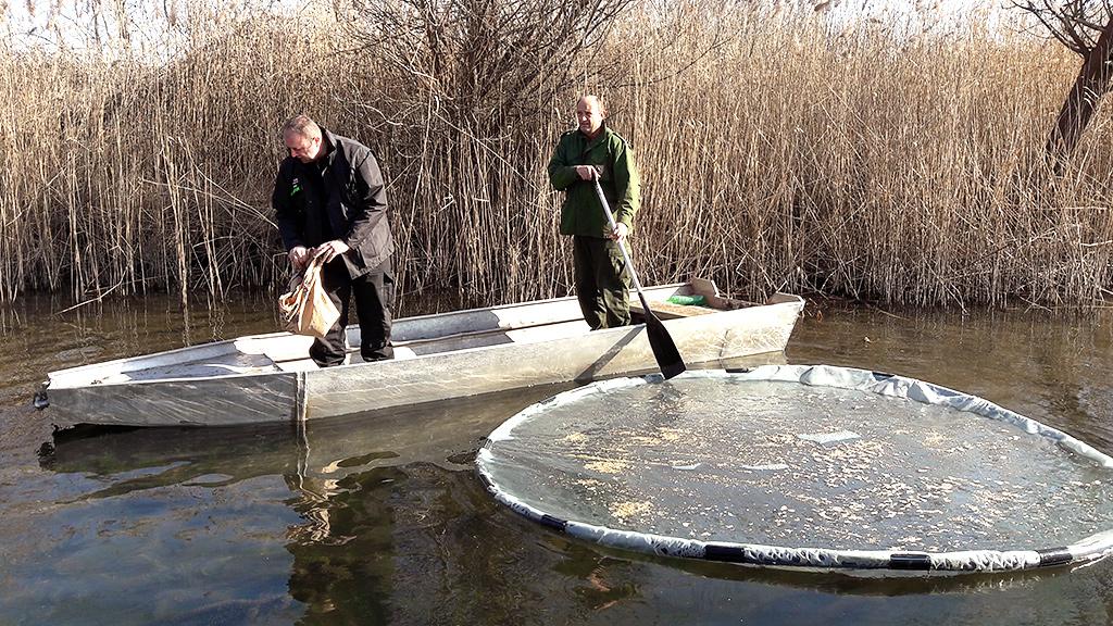 Hutovo Blato – Napori Ornitologa I Lovaca U Zaštiti Ptica Tijekom Zimske Migracije